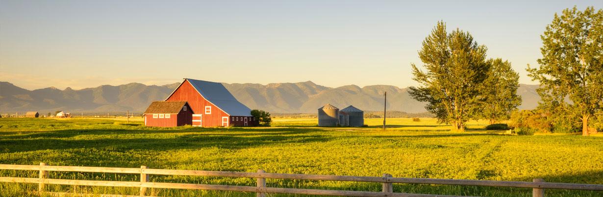 USA_Landwirtschaft